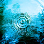 Ripple effect in the job search